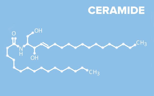 tìm hiểu về Ceramide